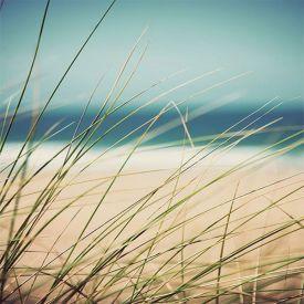 Strand, sand och vatten.